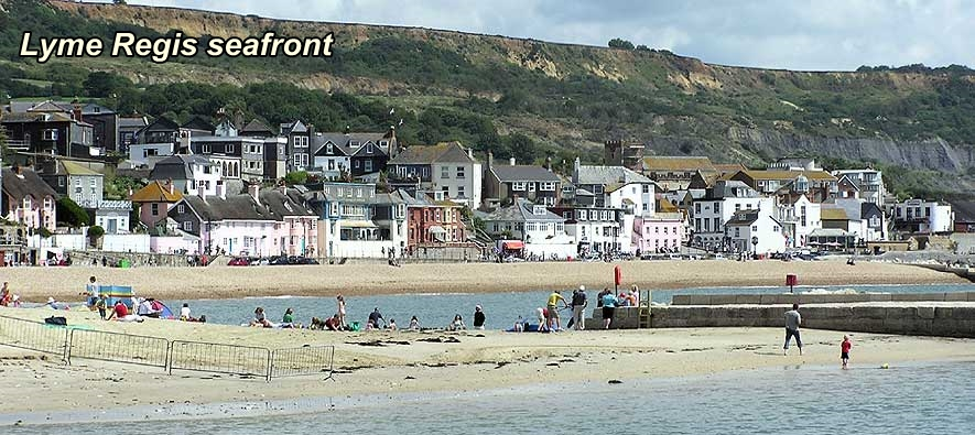 lyme regis accommodation - charnwood guest house